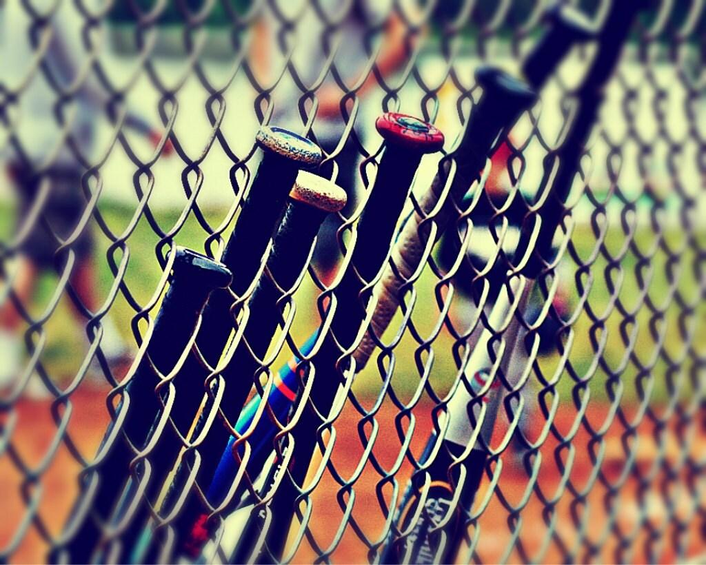 Baseball Bats Photograph - 5 x 7 - Sports Springtime - NutHutArts