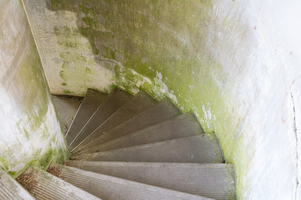 Stairs at Russell Battery, Fort Stevens, OR - 8 x 12 - NakedEye17Images