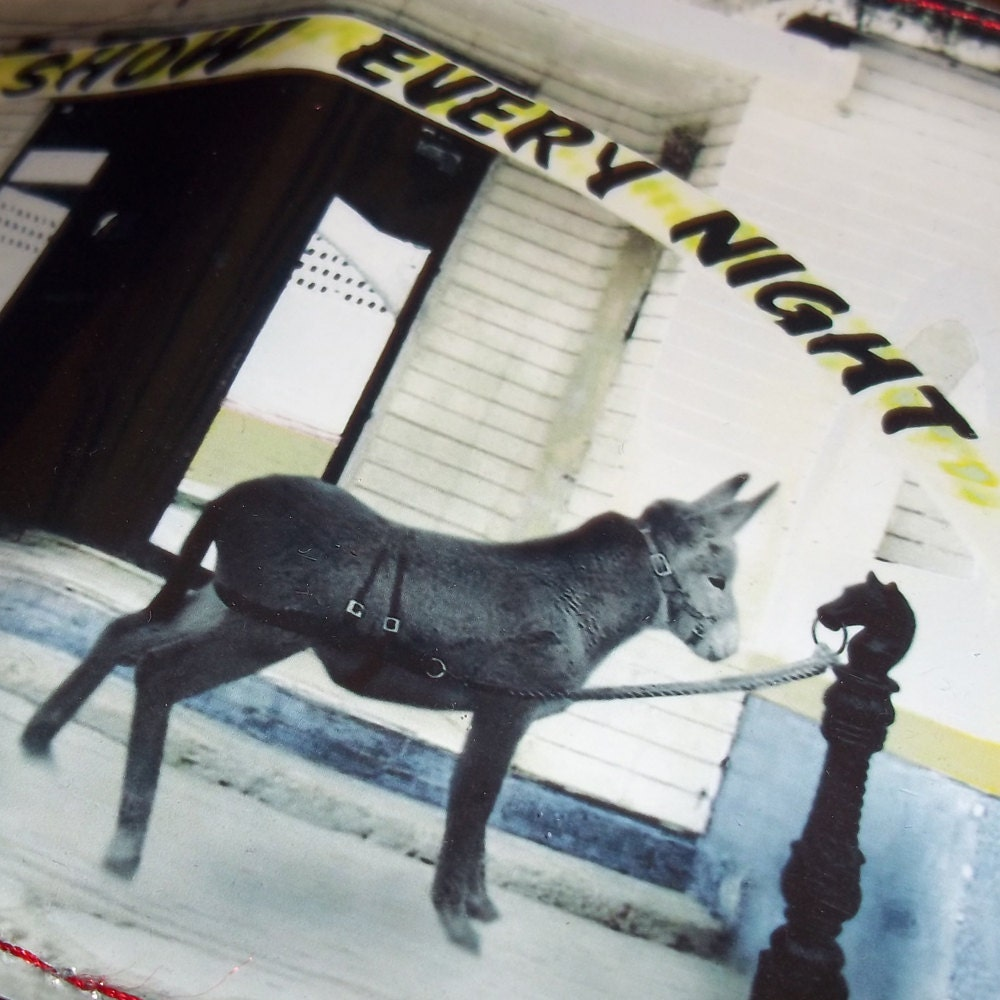 Mature Mexican Donkey Show Evil Humor Agorables Vinyl Wallet Adult XXX sick ...