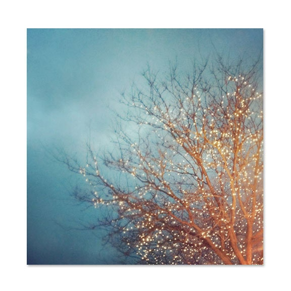 Fine Art Photo, December Lights, 5x5 Print, Christmas Tree Lights, Nature Photography, Holiday Scene, Bare Branches, Blue Sky