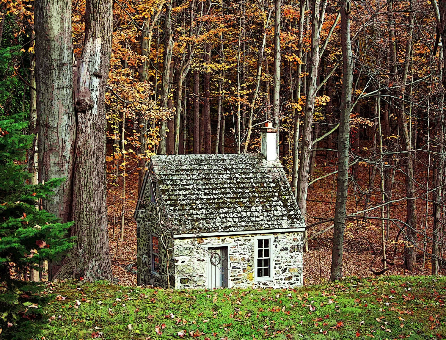Thanksgiving Photography,  The Cabin fine art photography print  8x10 nature, woods, autumn,