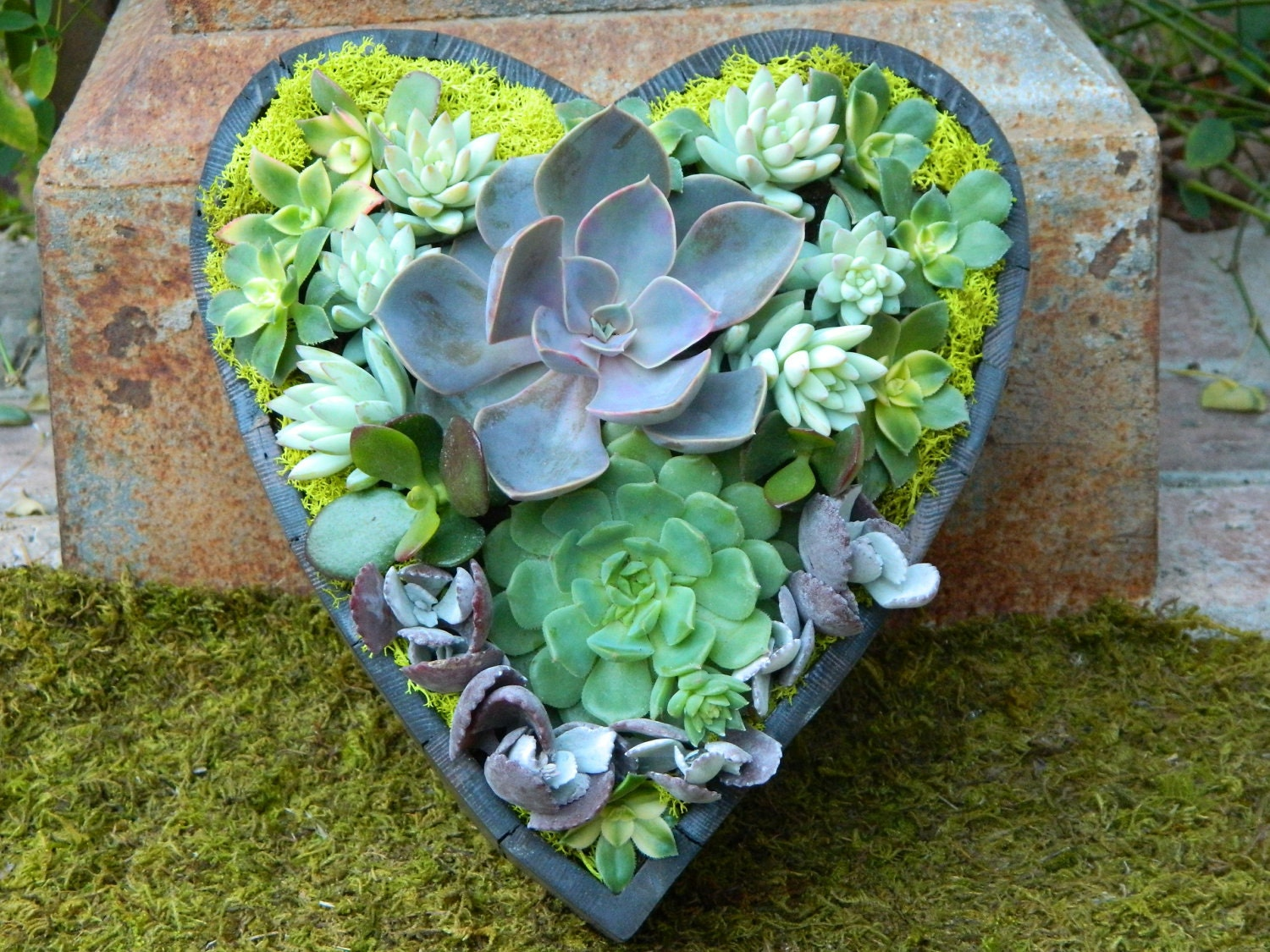 Succulent  Centerpiece, Succulent Garden, Succulent  Wedding Centerpiece - Succulent Wedding Table Decor