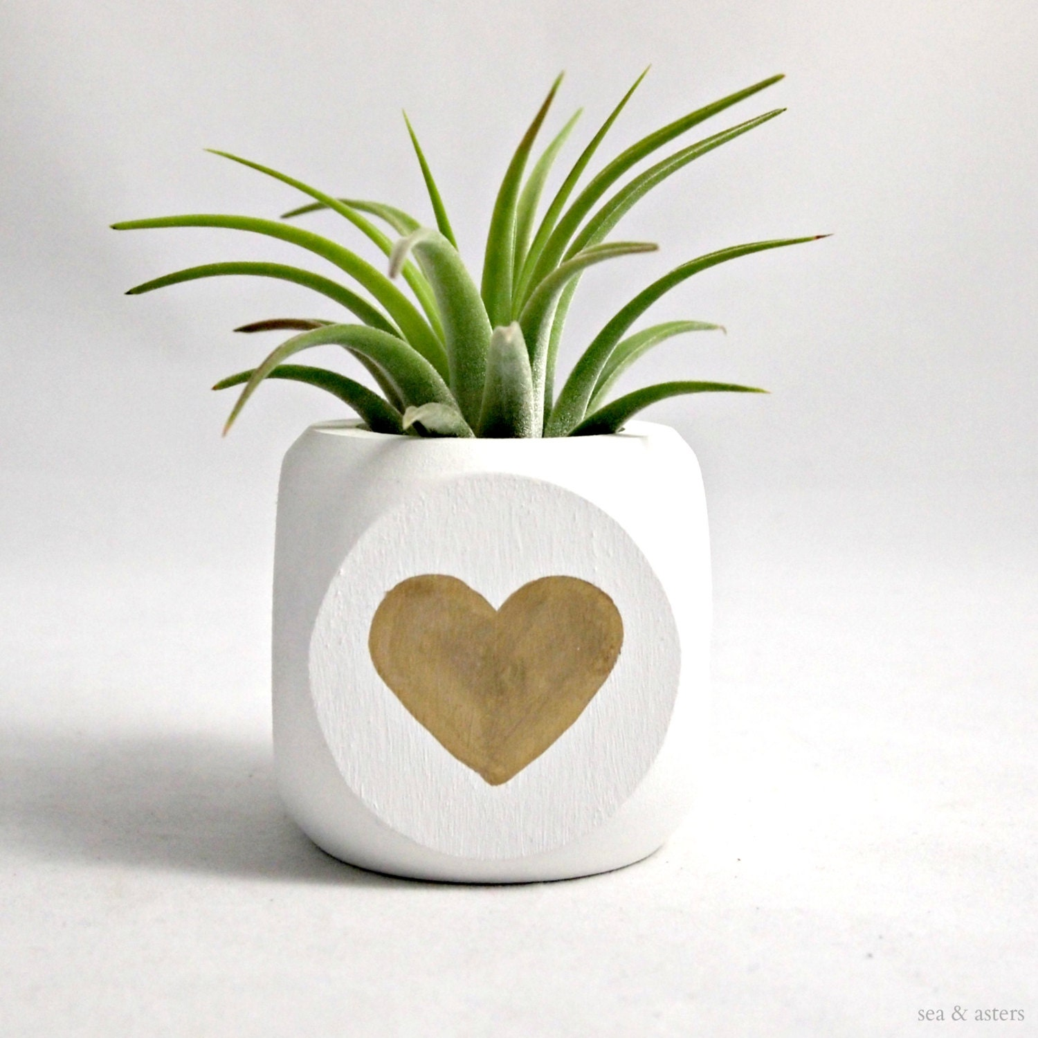 Gold Heart Valentine Air Plant Container // Planter // Home and Garden - seaandasters