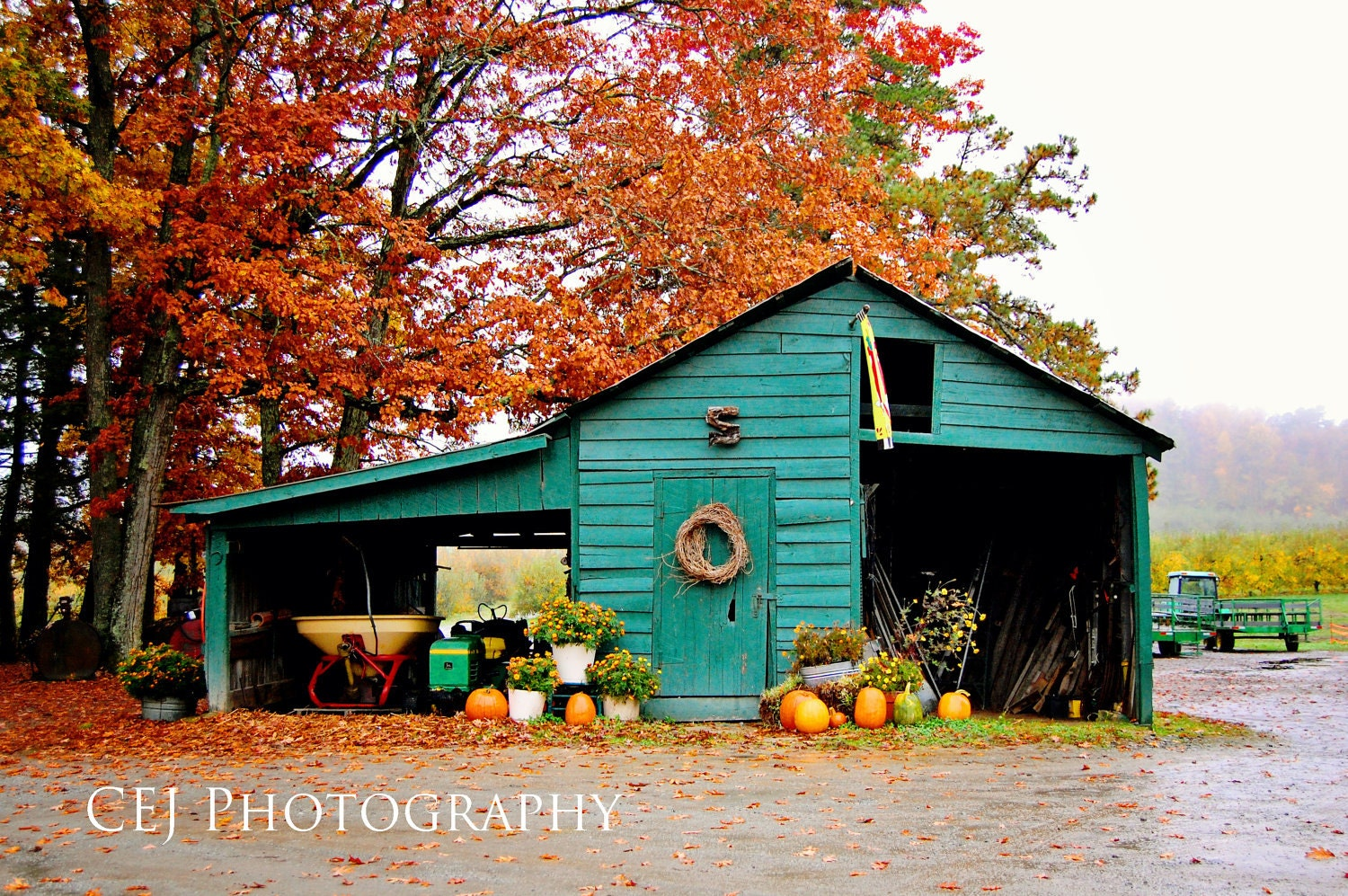 The Green Barn - CEJPhotography