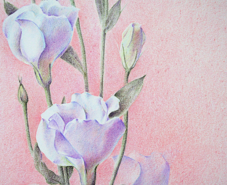 Little flowers - an original drawing - floribundae