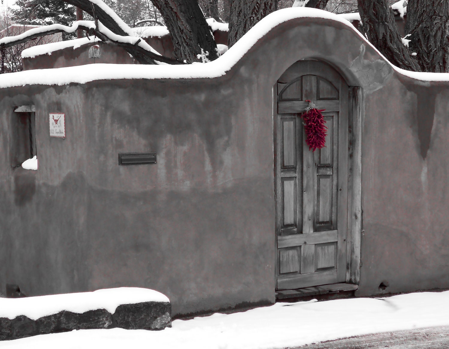 Holiday decor, Christmas winter monochrome goth art,  blood red peppers, door photo, New Mexico steel grey, south west adobe cottage 5x7 - BlackCatPhotographs