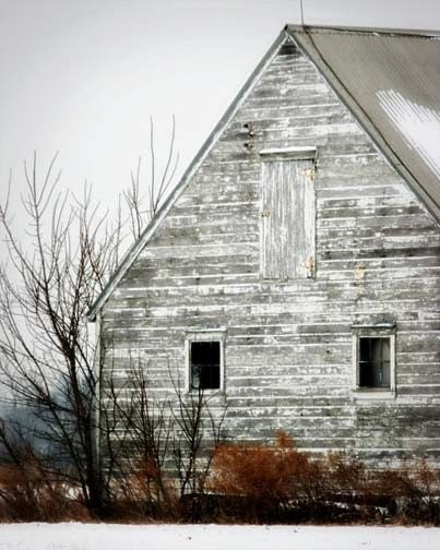 Rustic Barn Photo - white, winter, shabby, run down, heritage, americana