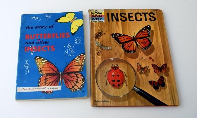 Vintage Butterfly books - SleepyOwlVintage