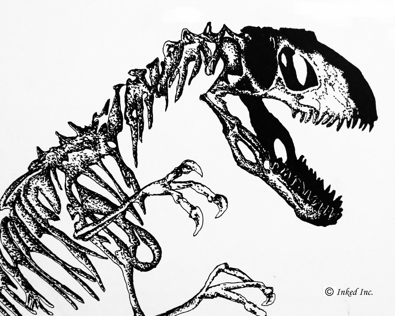 Plant fossil clip art for Fossil coloring pages