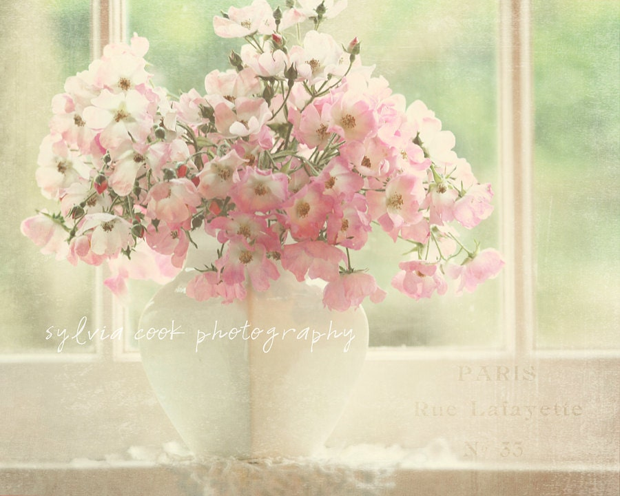 shabby chic home decor roses Pretty in pink- fine art print-still life-window romantic - VintageChicImages
