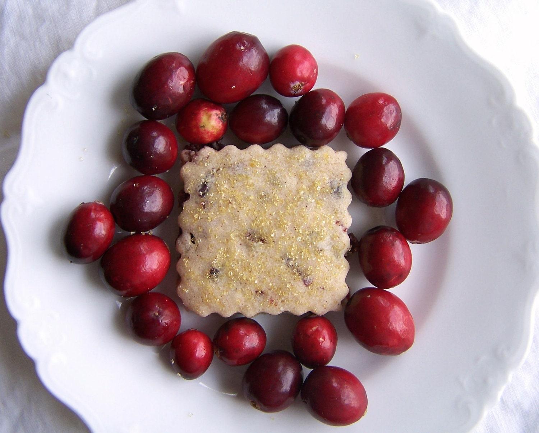 Cranberry Orange Spice Shortbread Cookies 1 Dozen - ButterBlossoms