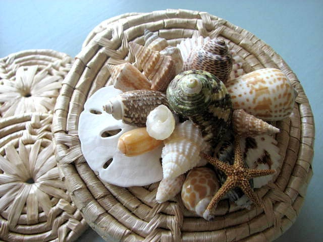 Пляж Декор Shell Coaster Set - Морской Подставки Seashell декора, плетеная набор из 4