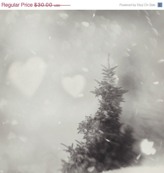 30% Sale - Tree Photo, Snow, snowstorm , pine tree, holiday, winter - Up to the Sky 8x8