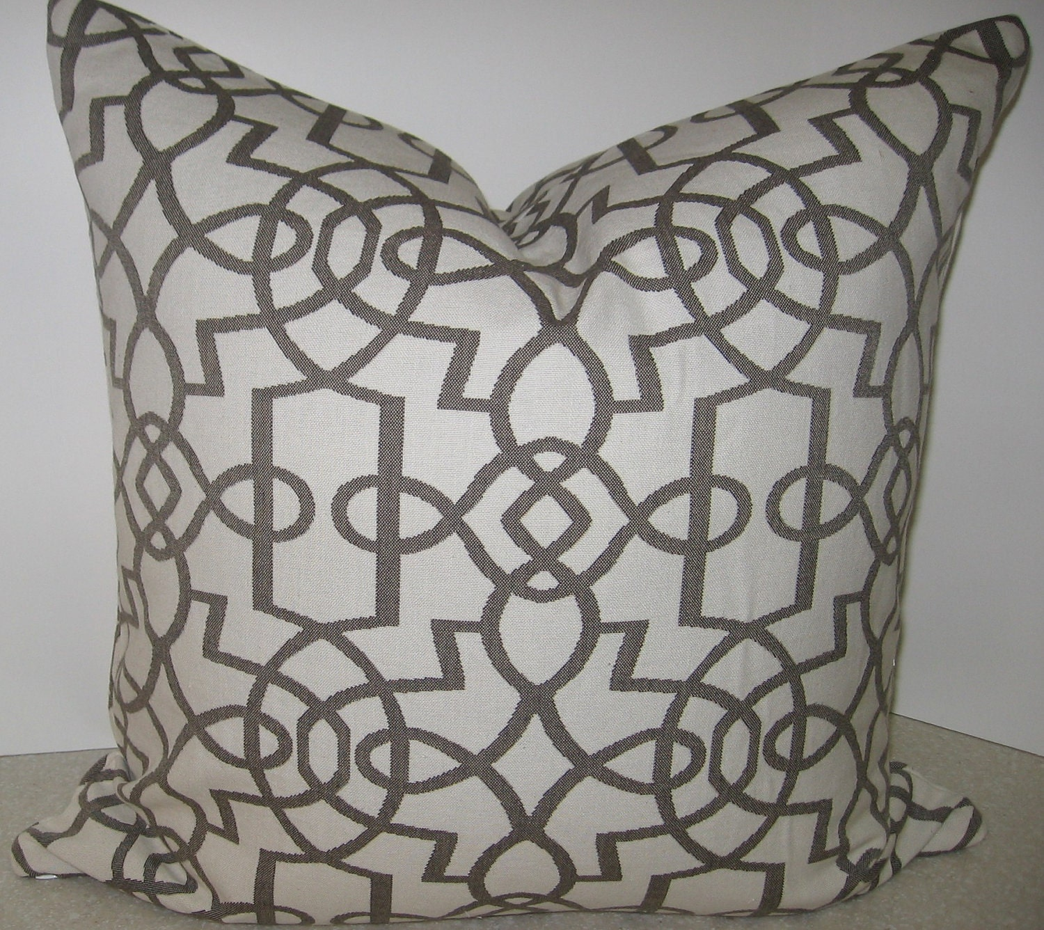 BOTH SIDES trellis geometric 20 x 20 pillow cover