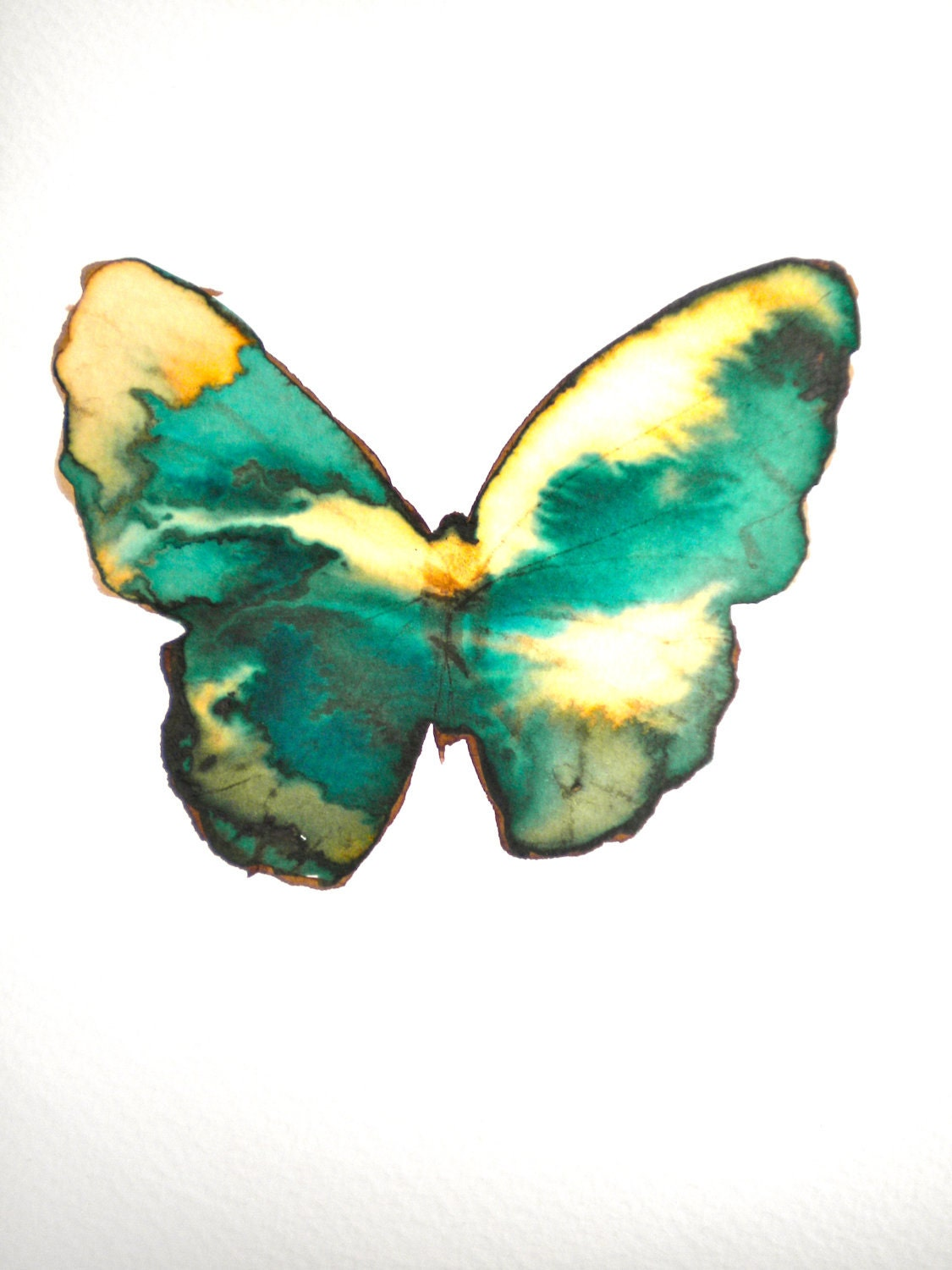 green and gold flecked butterfly - metamorphosing