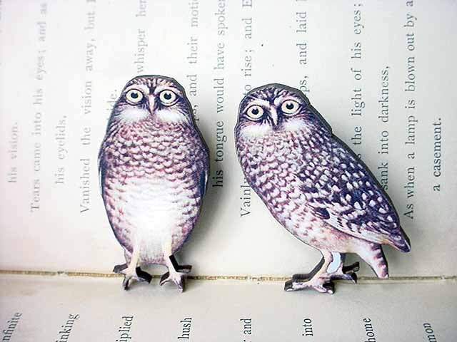 Owl Brooch Set Woodland Pin Vintage Illustration Forest Natural History
