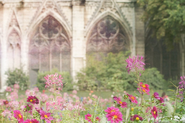 Paris Photo, Jardin дю Нотр-Дам, Париж, Франция - Красочный сад цветов Лето, архитектурно французского изобразительного искусства Путешествия Фотография