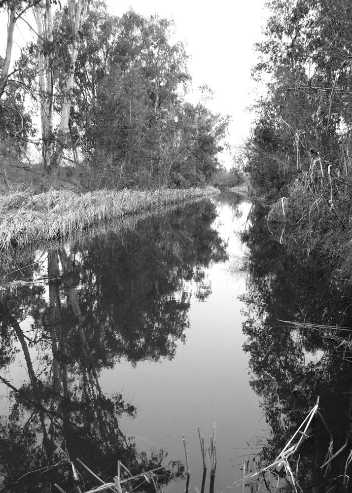 Reflection - Fine Art Photograph 5x7 Black and White - JilleinPhotography
