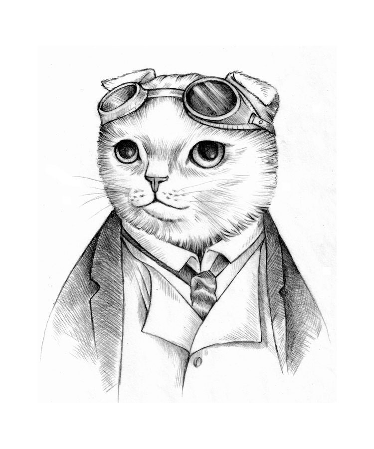 Steampunk Cat Print Scottish Fold Cat with Goggles from an Original Drawing - Iktomi