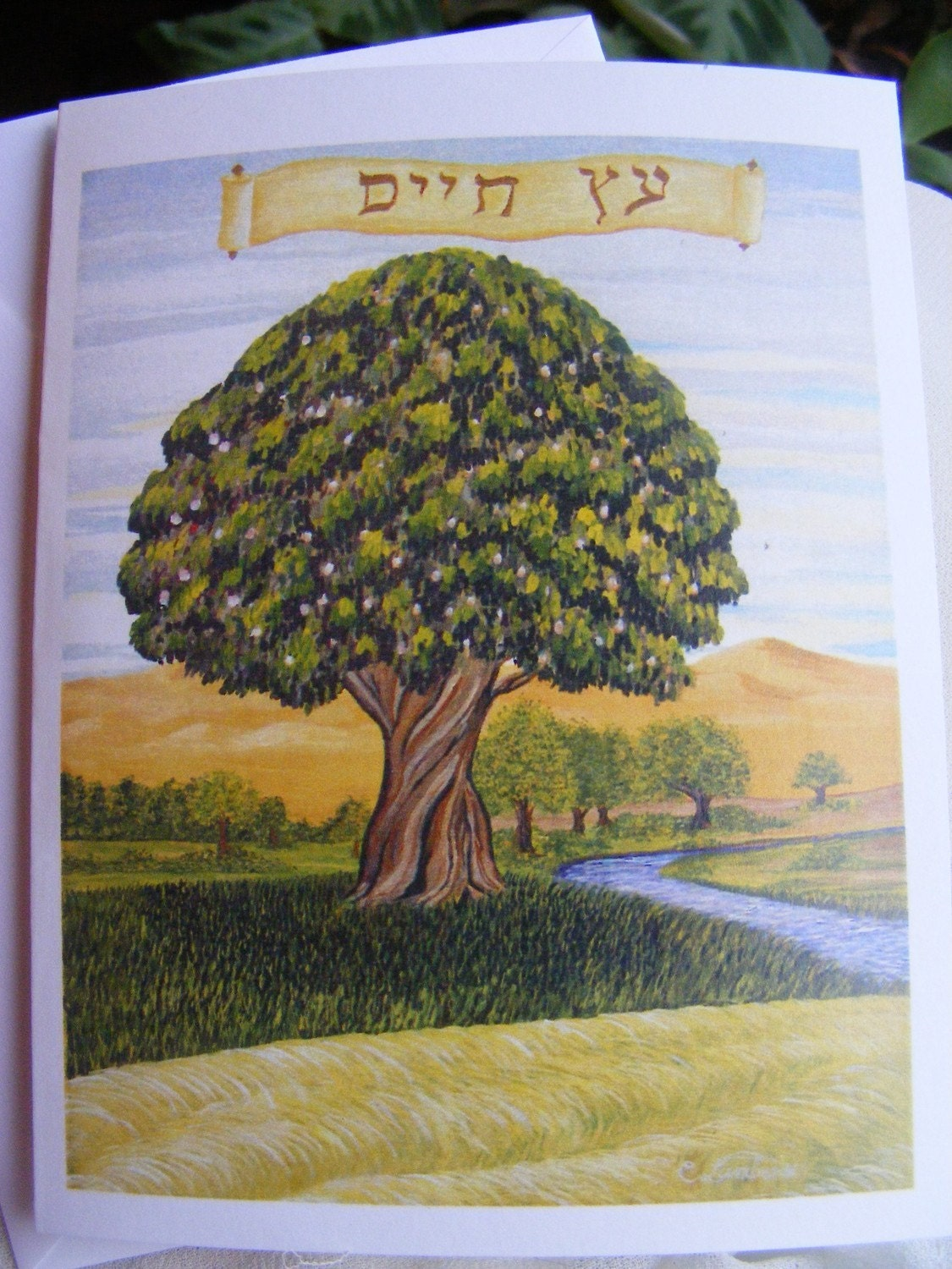 Set of 5 Blank Greeting Cards Hebrew Tree of Life