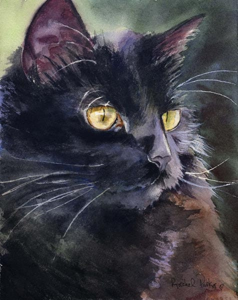 Black Cat Art Painting PRINT Watercolor Rachel Parker rachelsstudio Artist Artwork