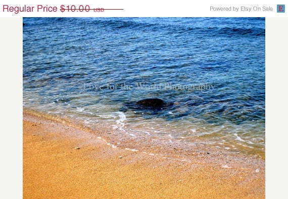 Sale Save 25% The Emerging Sea Turtle - 8x10 Photograph, Additional sizes and canvas options are available, see below for details. - Lovefortheworld