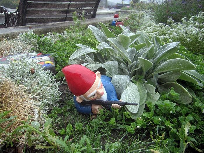 Garden Gnome Myschoolhouserocks