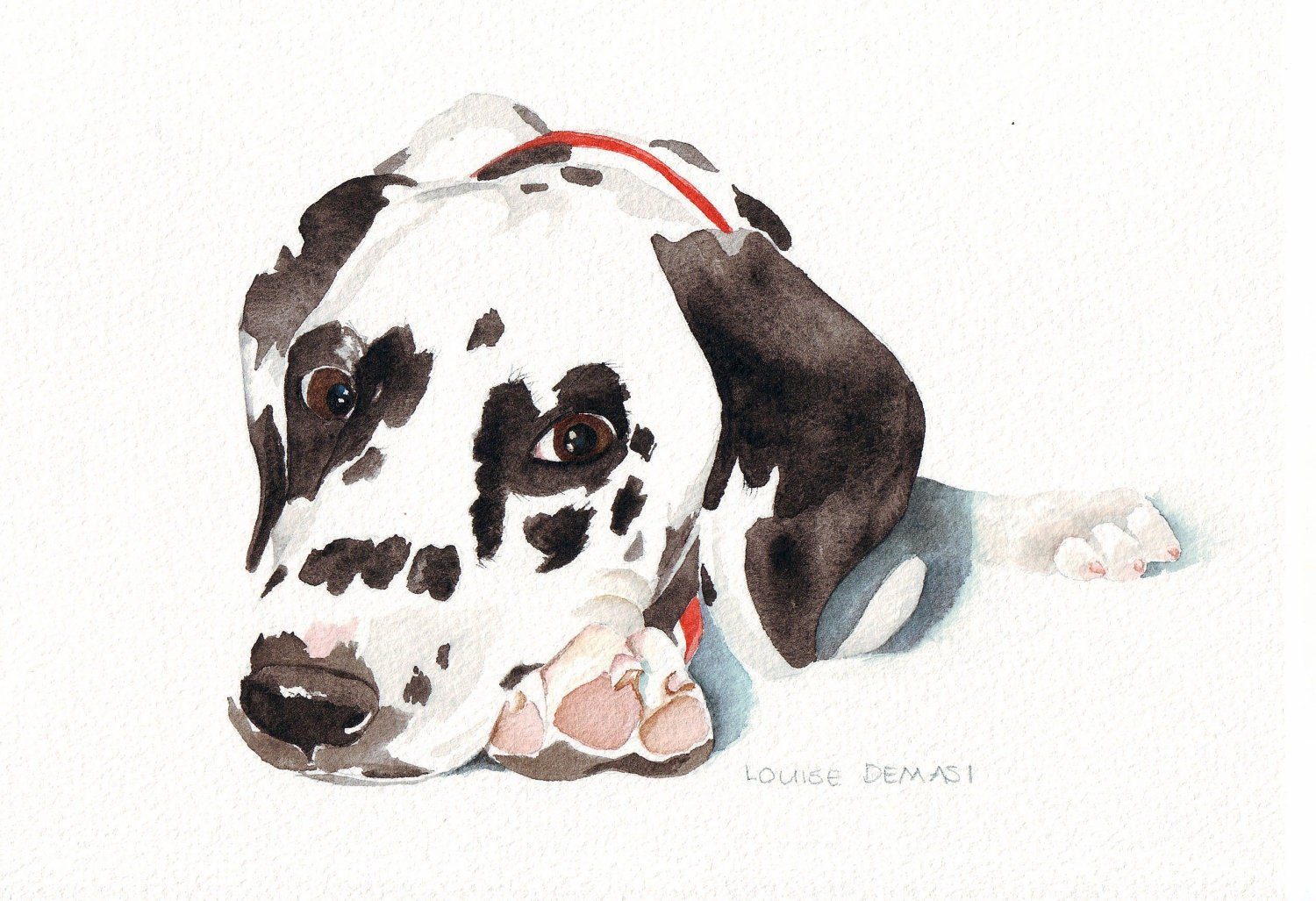 Dalmatian Dog Chelsea No. 0024 print of watercolor painting -(Splodgepodge)