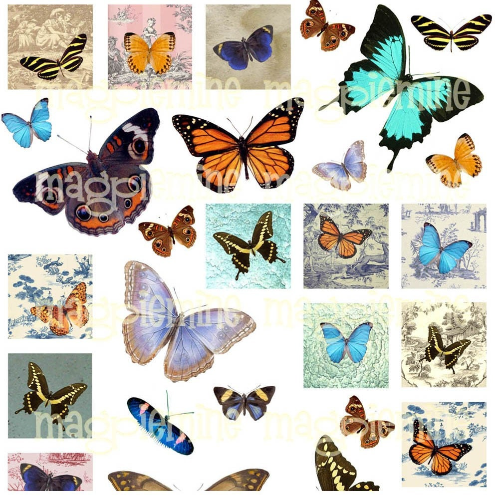 Digital Butterflies on Toile Background Collage Sheet - One Inch Squares Plus Individual Moths and Butterflies - Download - Printable