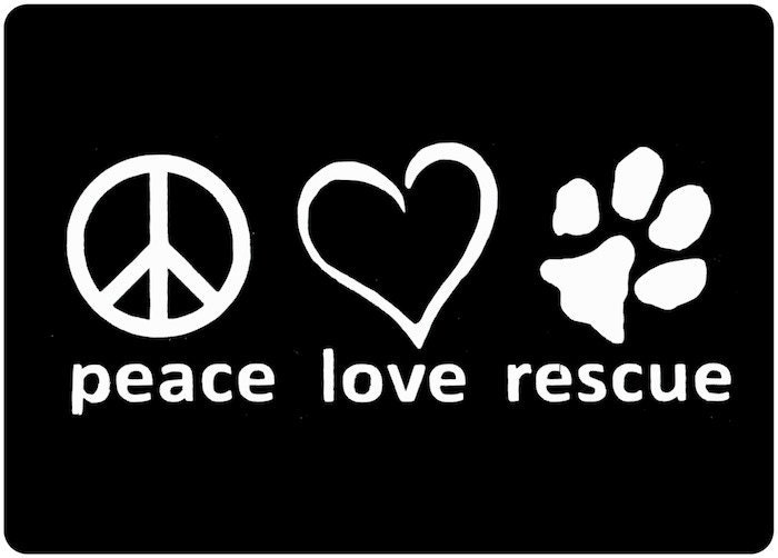 dog rescue decal adopt a dog vinyl decal dog by villagevinyl rescue a dog 700x502