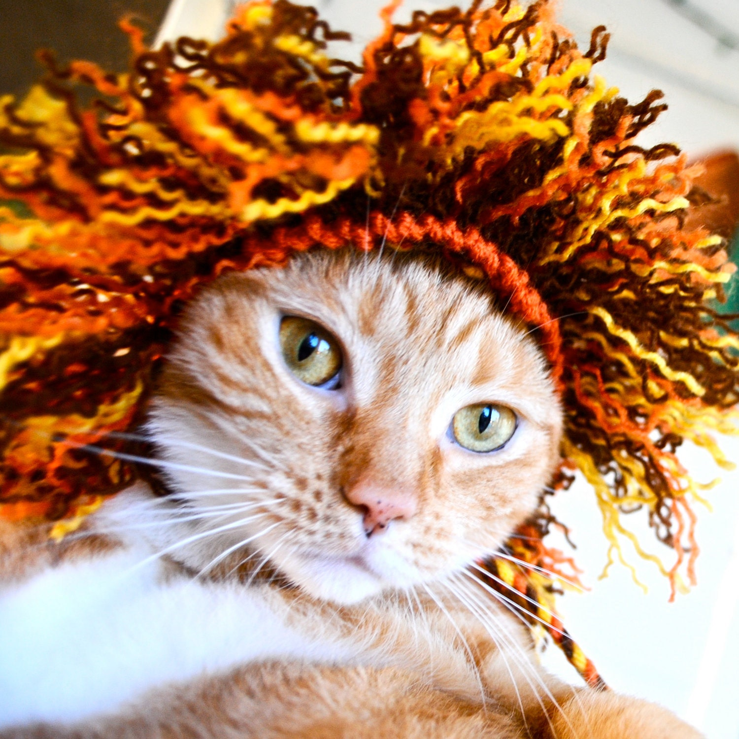 Lion Costume - Cat (Half Mane)