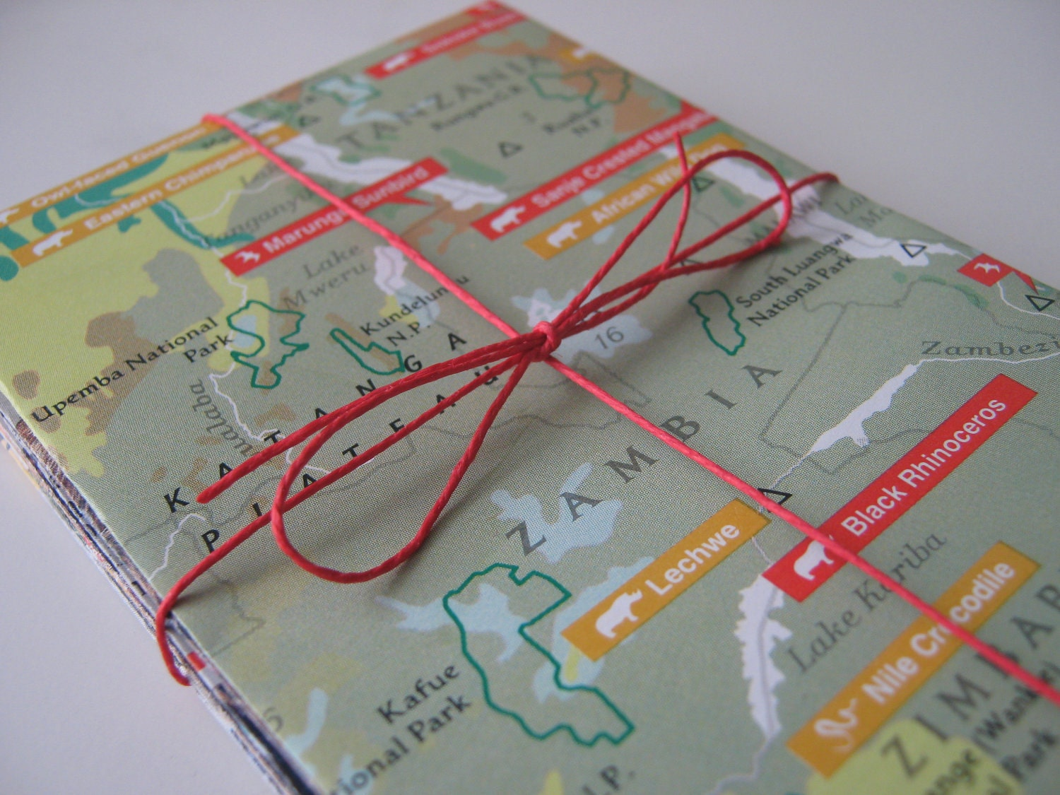 "Mini Envelopes Handmade from Upcycled National Geographic Animal Maps - Set of  12 - 2-7/8"" x 4-1/4"""