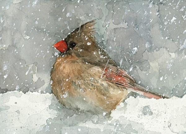 Cardinal Watercolor Art Print - studiotuesday