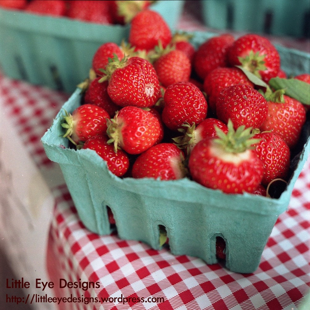 Sunshine and Strawberries - 5x5 Photograph Print - littleeyedesigns
