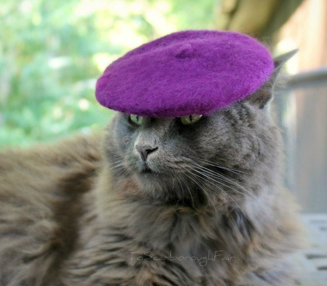 Cat Beret - Mini French Beret for Pets - Cool Kitty