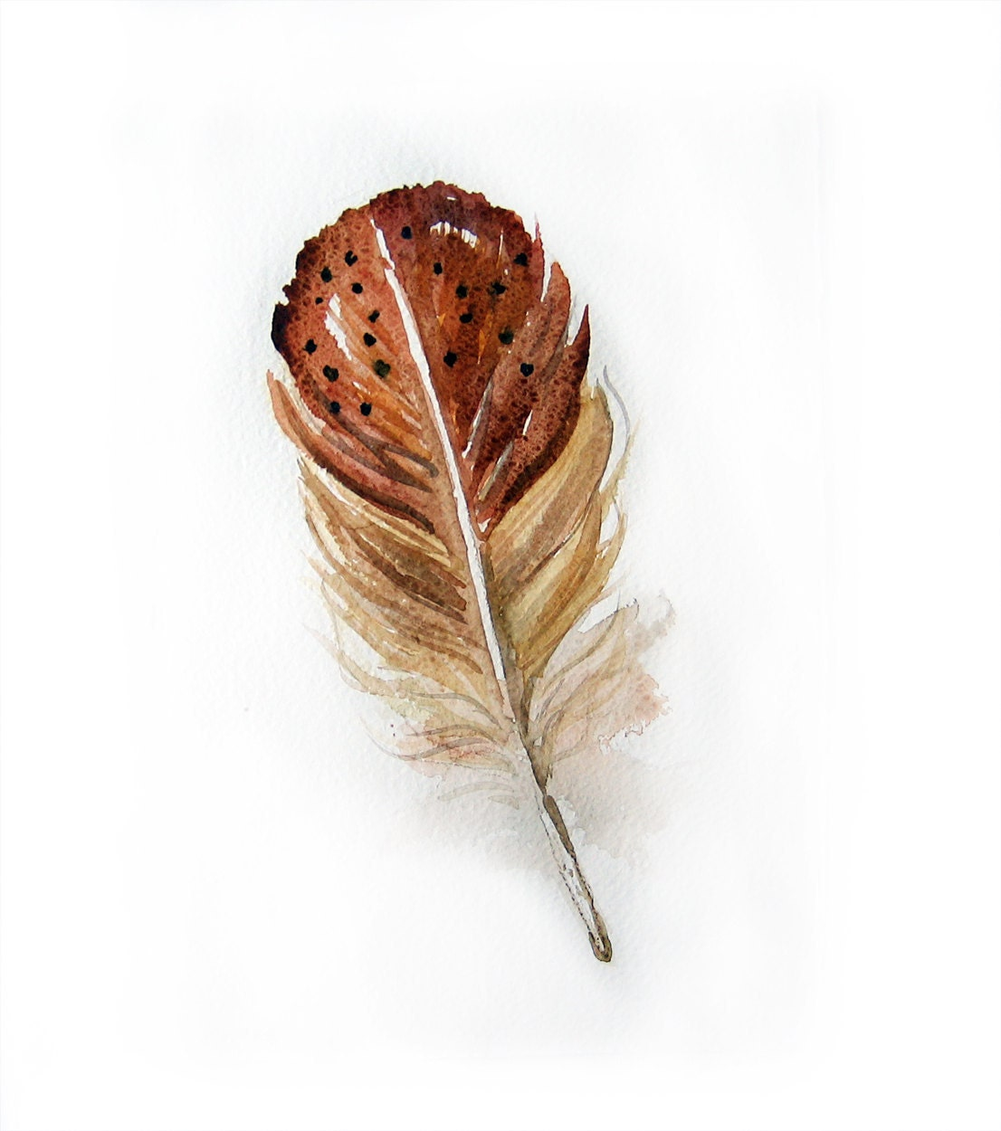Watercolor Feather-Watercolor painting of feather-Feather painting-Feathers in brown and beige - rakla