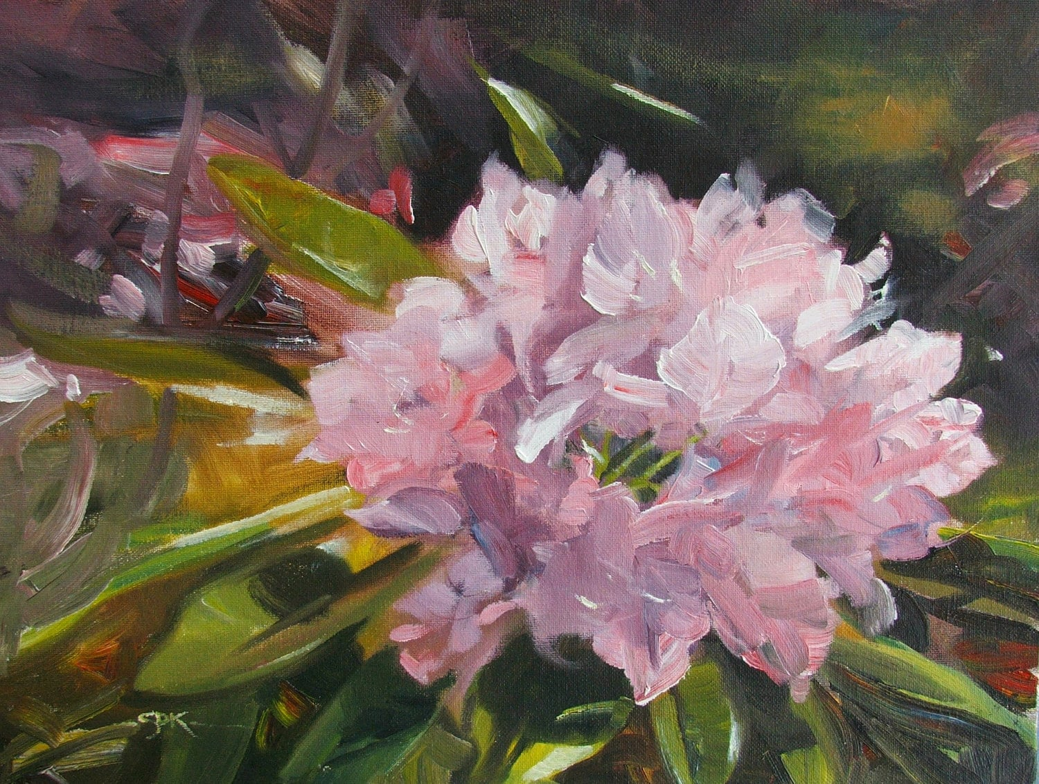 "Original Oil Painting -  Susan Kennedy - Rhododendron in Sun - ""Deep in its Roots"""