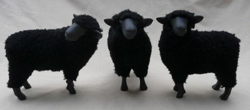 Black Sheep Trio