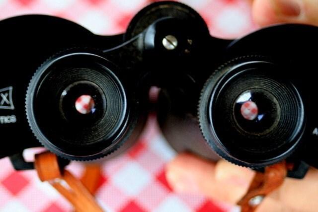 looking // Jefferson City, MO // picnic // binoculars // red, white, black // fine art print - shannerty