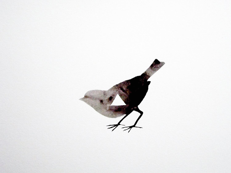 Geometric Bird - Original Watercolor