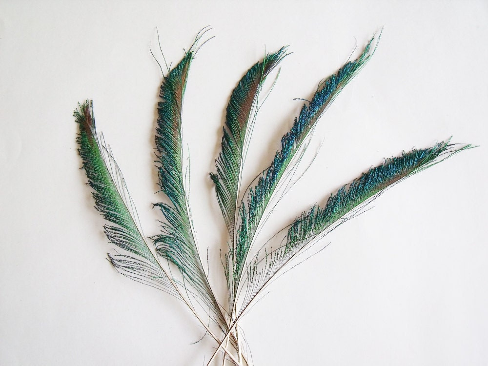 sprays in home decor and wedding feather and floral arrangements