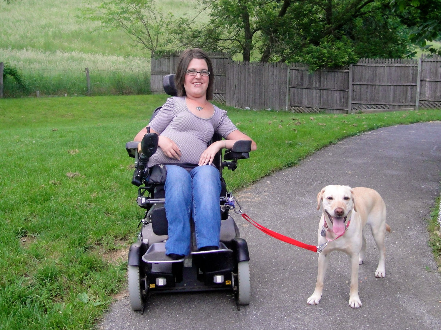 Partner Link - A Wheelchair Leash
