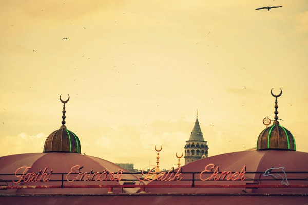 Istanbul travel photography - 8''x12'' photo - 20x30 cm - trip vintage postcard home pub restaurant office decor decoration - MundanalRuido