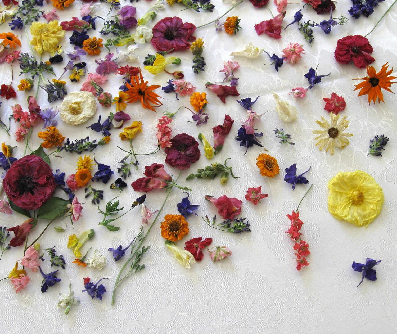 Wedding Dried Flowers 2000 Wedding Decorations Frompo