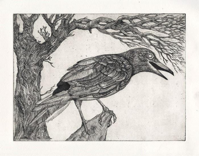 crow drawing, raven drawing, bird art, etching (digital print)