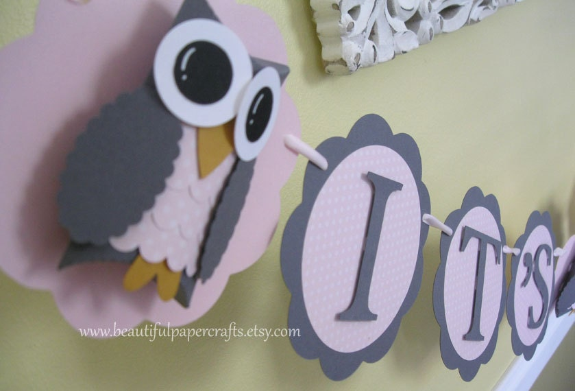 Owl Party Banner
