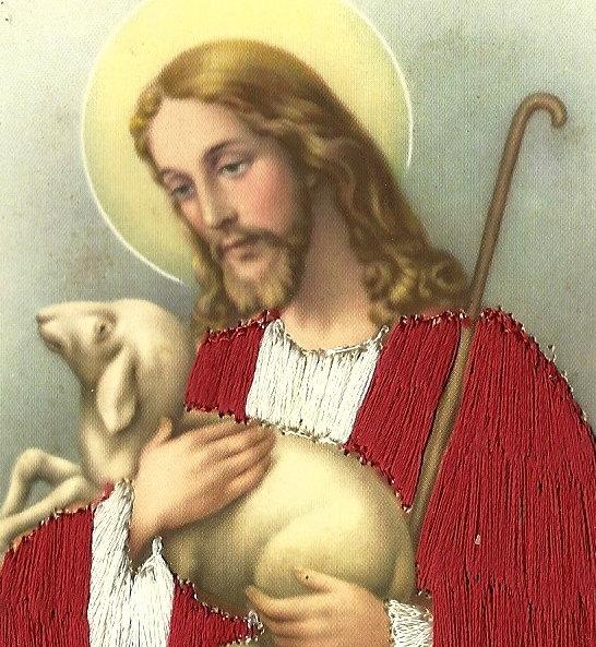 Amazon.com: Tommy Hilfiger Men's Polished Lamb Credit Card