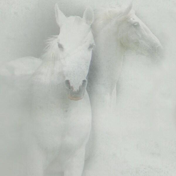 white horse print
