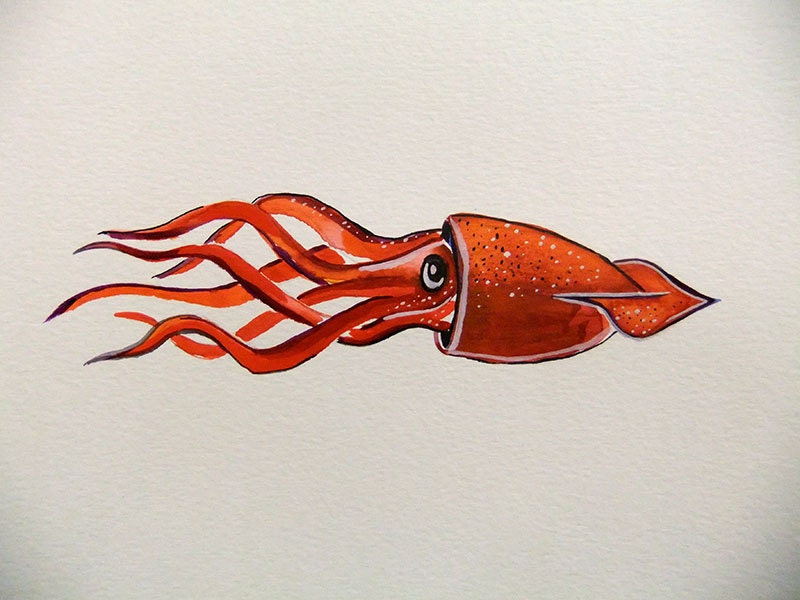 Original Watercolor Painting-Squid