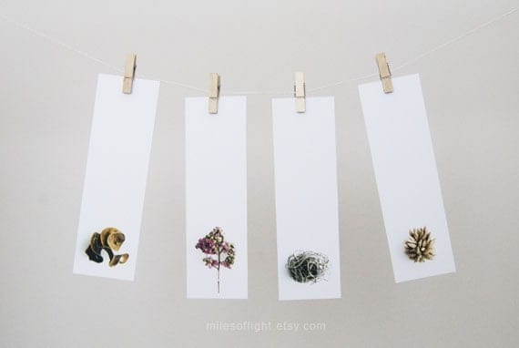 Bookmarks Set - Natural Series III. Nature photography bookmark. Minimalist. Botanical. Book lovers gift. Stocking stuffers. - MilesOfLight
